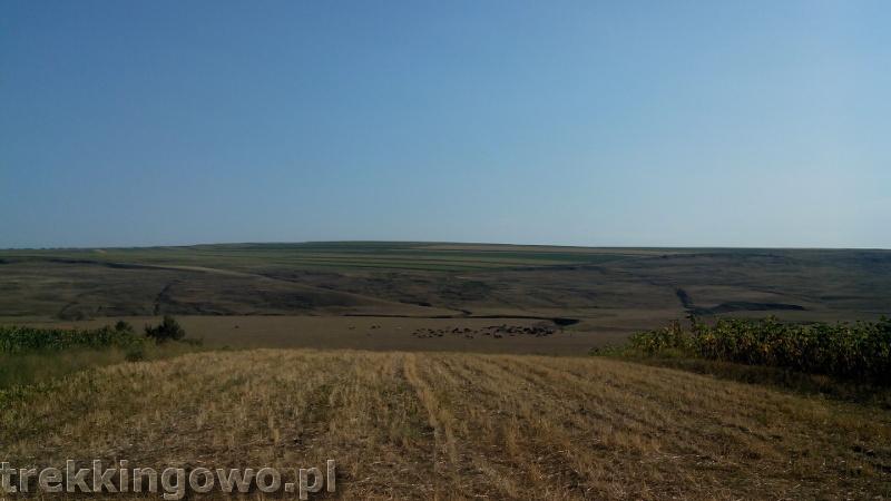 Mołdawia - Dzień 8 Rumunia widok przestrzeń step