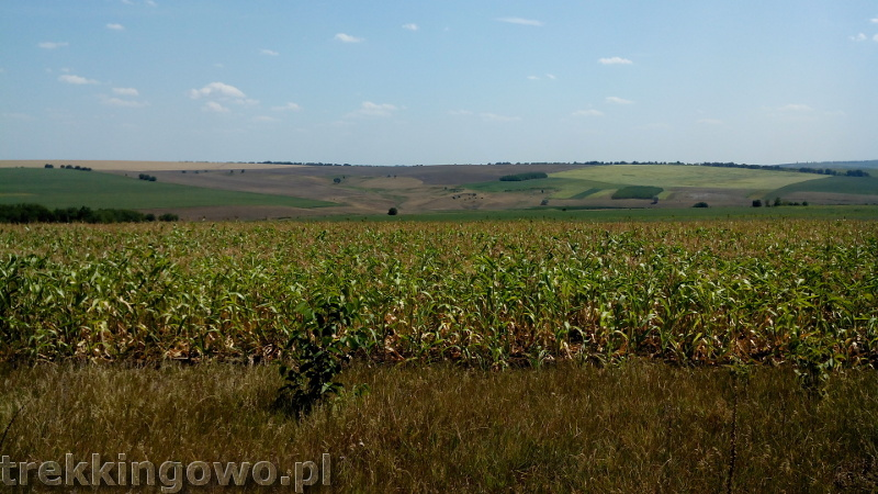 Mołdawia - Dzień 3 pola kukurydzy trekkingowo