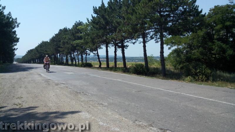 Polska wieś Strycza - Wyprawa rowerowa Mołdawia 2015, dz. 4 drogi sosny trekkingowo