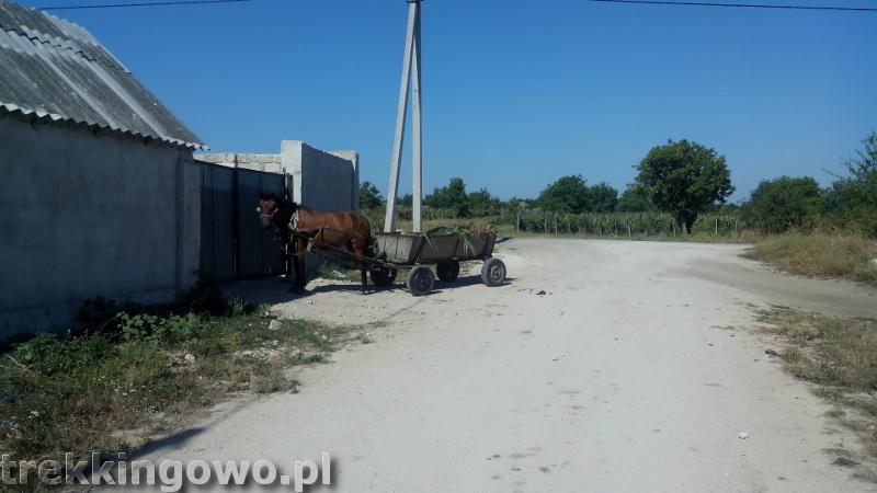 Orheiul Vechi i Kiszyniów Orheiul Vechi i Kiszyniów Mołdawia - Dzień 6 wóz z koniem trekkingowo