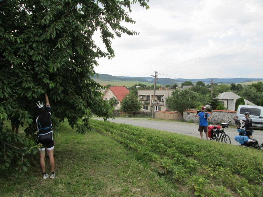 słowacja czeresnie