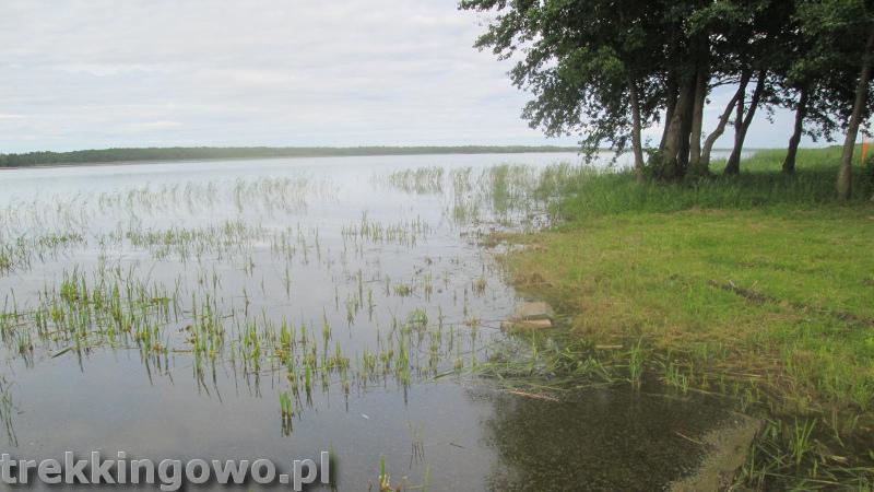 szlak latarni morskich Łeba jezioro Sarbsko trekkingowo