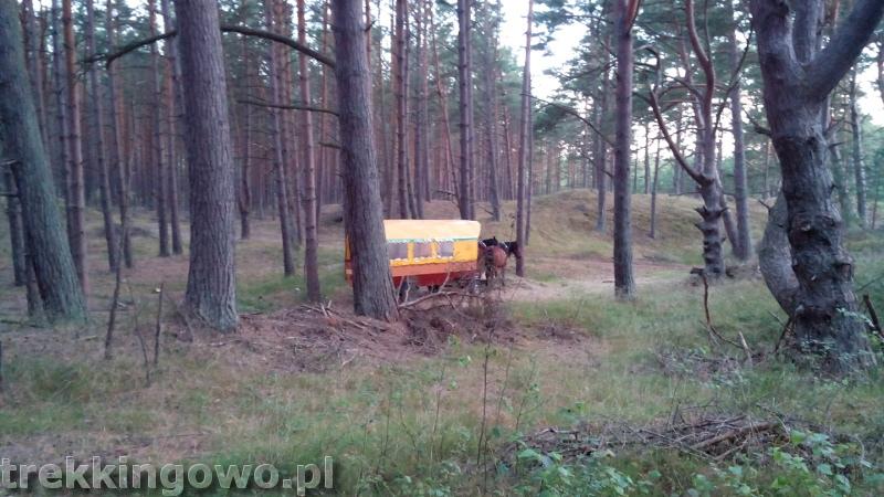 rozewie bryczka cyganie wóz trekkingowo