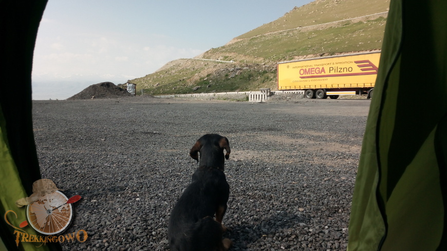 jurta kirgistan pies poranek trekkingowo