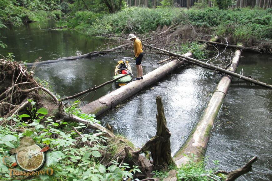 pointer k2 spływ regą trekkingowo