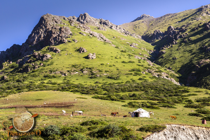 jurta kirgistan jurty trekkingowo